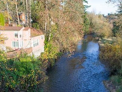 Salmon Creek Near Vancouver WA