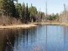 Salmon Trout River