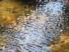 Salome Creek - Tonto - Arizona