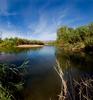 Salt River - Tonto - Arizona