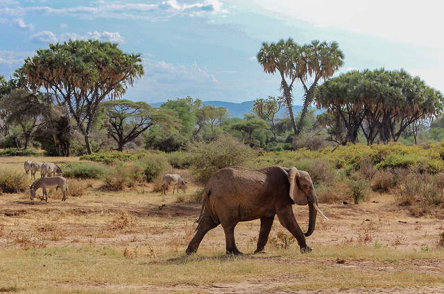 Lake Turkana Adventure Safari Photos