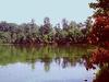 Sam Dale Lake State Fish And Wildlife Area