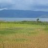 Samosir Island - Sumatra - Indonesia