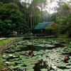 Sandakan Memorial Park - View