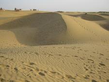 Sand Dunes Of Thar Desert