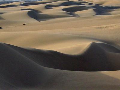 Sand Dunes     Oceano  C A