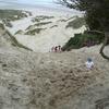 @ Sandfly Bay - Dunedin - Otago NZ