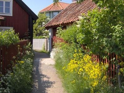 Gravel Alleys Sandhamn
