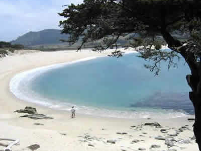 Sandy Beach At Carmel River