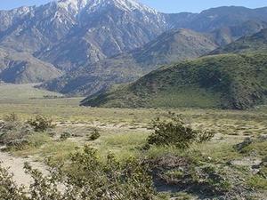 Montañas de San Jacinto