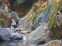 Santa Anita Creek
