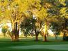 Santa Fe Country Club