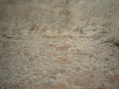 Santa Fe Trail Ruts At Fort Union