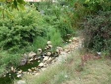 Sarata River