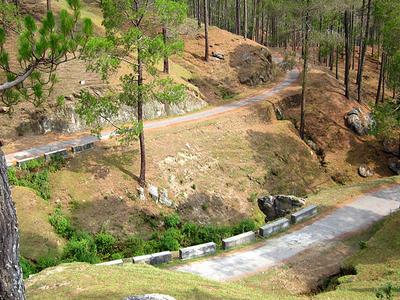 Sarna Garden Road, Ranikhet