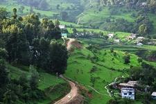 Scenic Landscape @ Almora UT