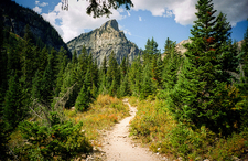 Scenic Paintbrush & Cascade Loop Trail - Grand Tetons - Wyoming - USA