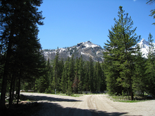 Scenic View Near The Northeast Entrance Ranger Station - Yellows