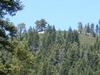 Schroeder  Mountain
