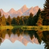 Schwabacher's Landing - Snake River In Grand Tetons National Park WY