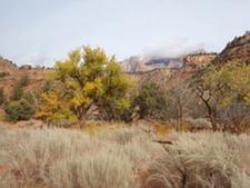 Scoggins-Coalpits Wash Junction - Zion - Utah - USA