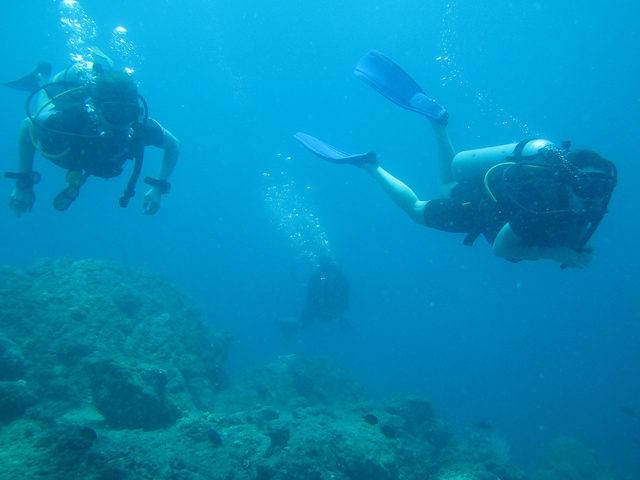 Dive Tour in Andaman Photos