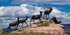 Sculpture At National Museum Of Wildlife Art - Yellowstone - Wyo