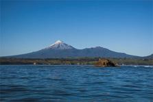 Seal Rock - Tapuae Marine Reserve