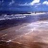 Sea Rim SP