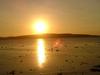 Semau Island