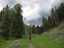Sepulcher Mountain Trail At Yellowstone