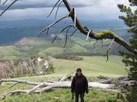 Sepulcher Mountain Trail