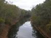 Sepulga River