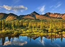 Serenity Lake - Tundra - Alaska