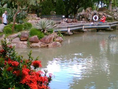 Shatin Park South Garden Pond