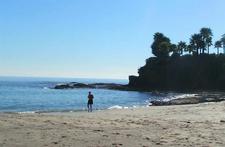 Shaw's Cove Beach