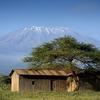 Shed - Kilimanjaro Backdrop - Tanzania
