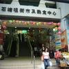 Shek Tong Tsui