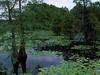 Sheldon Lake SP