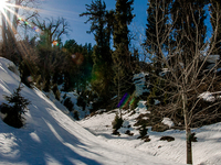 Adventure Tours in Himachal Pradesh
