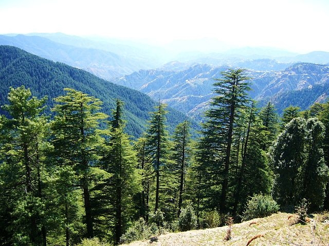 Himachal Delight Package Photos