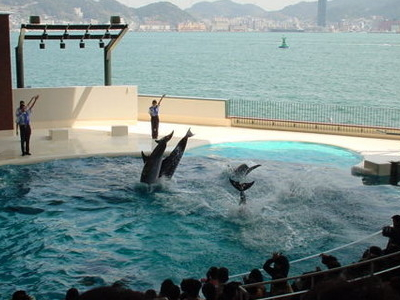 Shimonoseki Aquarium