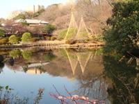 Shin-Edogawa Garden