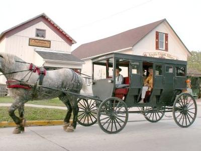 Shipshewana  Indiana  Amish  Buggy