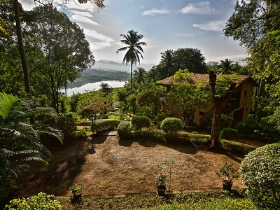 Shores Of Victoria Reservoir In Sri Lanka