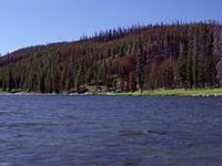 Lago Shoshone