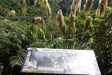 Signboard Amidst Landscape
