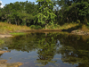 Siju Bird Sanctuary