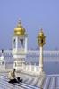 Sikh Devotee The Sarovar