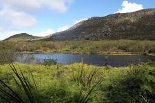 Silvermine SA Table Mountain National Park